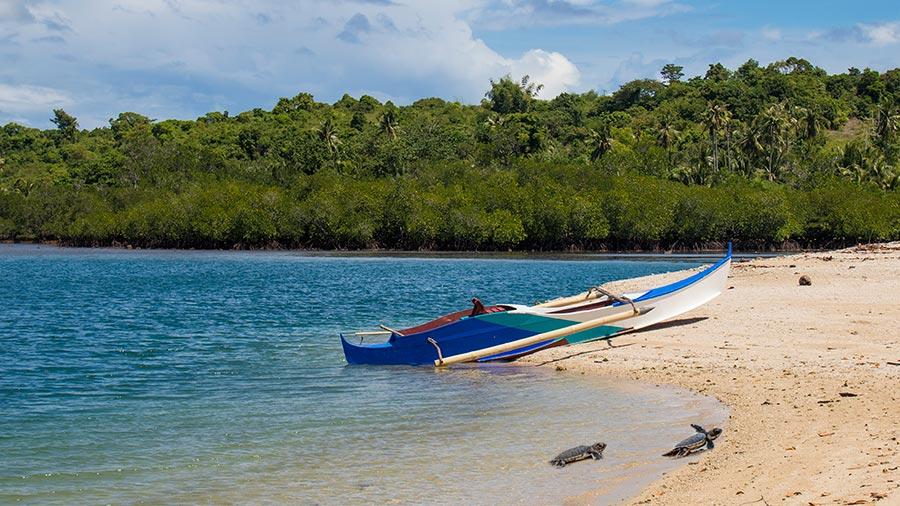 Turtle Island - Siaton - Negros Oriental